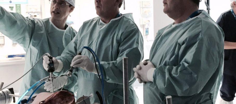 cirugia cadera 4