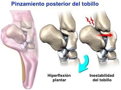 imagen anatomica